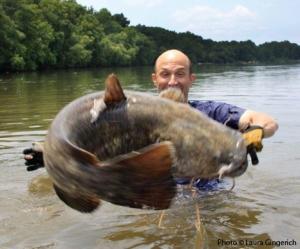 flippin fish