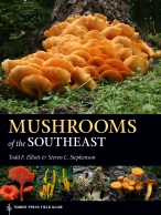 Mushrooms of the Southeast Cover